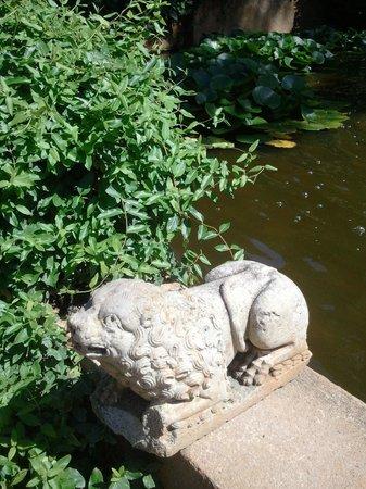 Jardin Santa Clotilde : lion