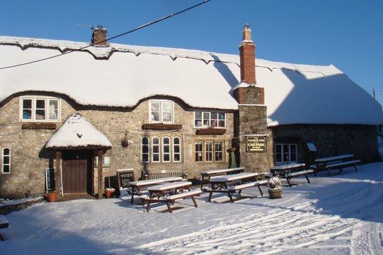 The George Inn: George Inn Chardstock