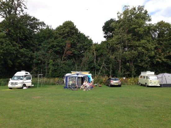 Whitehall Farm : Spacious Campsite