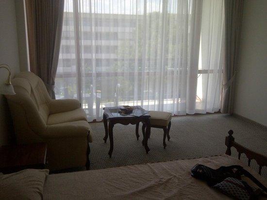 Hotel Mercury: big room