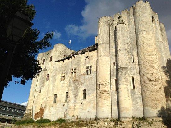 Hotel Particulier La Chamoiserie: Donjon in Niort