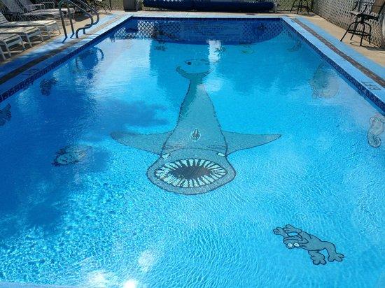 Holiday Lodge Motel: Heated Pool