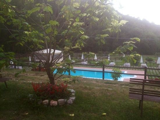 Agriturismo La Ciriola: vista con piscina