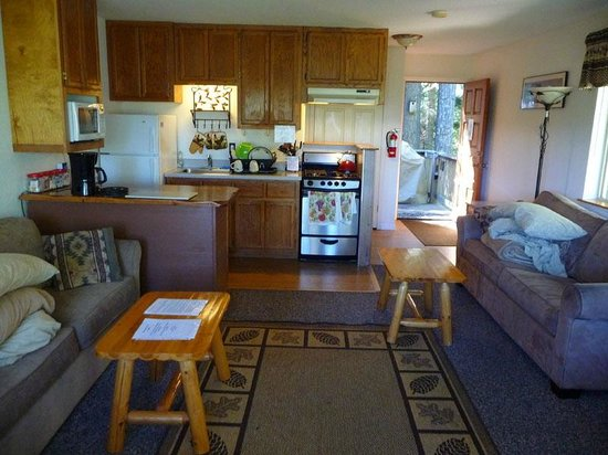 Yosemite's Scenic Wonders Vacation Rentals: Tiny kitchenette and living room