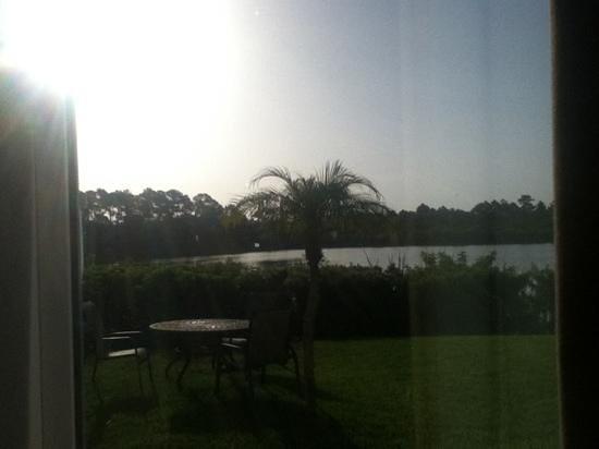 Hampton Inn Port Charlotte / Punta Gorda: view from the window