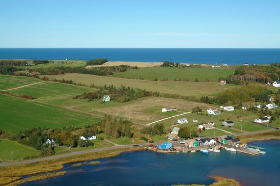 Wild Goose Lodge and Retreat: Sky view of area