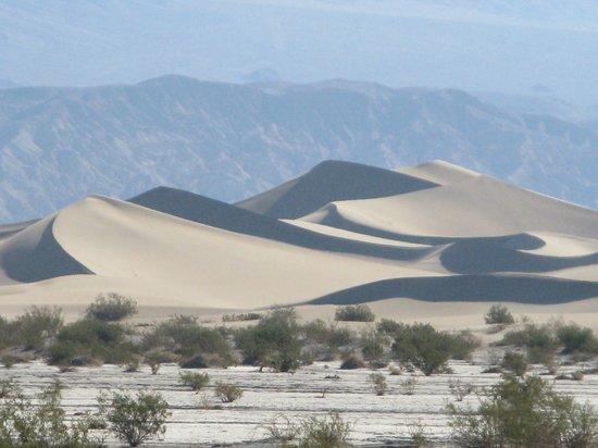 Mesquite Flat Sand Dunes: Sand Dunes / Death Valley
