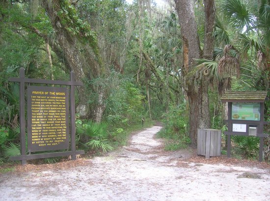 Hillsborough River State Park: Start of the hiking trail from the parking lot.