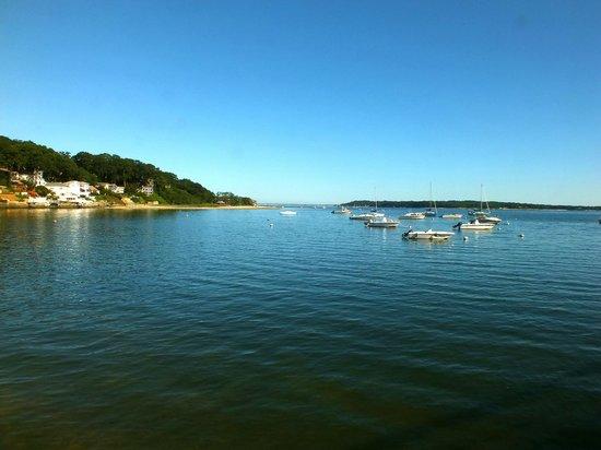 Island Wakeboard Academy: Beautiful Northport Bay
