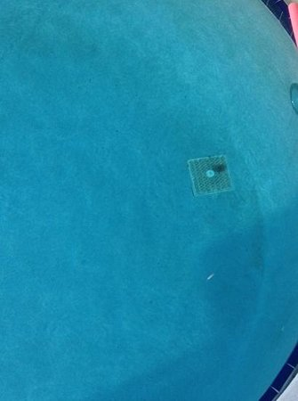Sea Cliff Resort: dirty pool ..look at dirt accumated on that grill