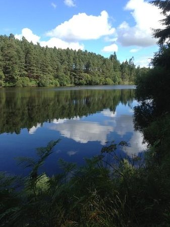 Millbuies Trout Fishery, Moray Fly Fishers