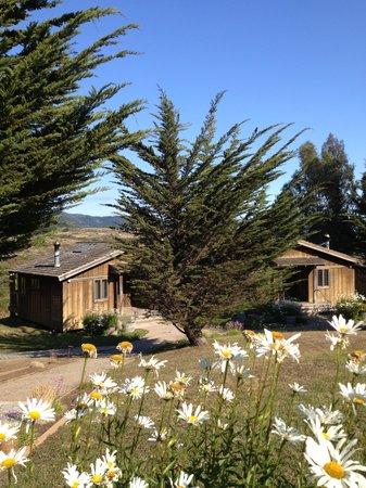 Costanoa Coastal Lodge & Camp: Log Cabin at Costanoa