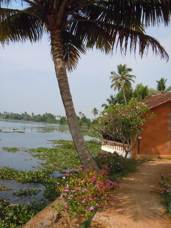 Green Palace Kerala Resort: View of the cottages