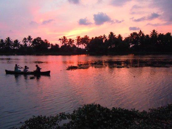 그린 팰리스 케랄라 리조트 사진