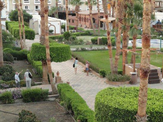 Al Mashrabiya: Отель фото с крыши, куда забирались загорать