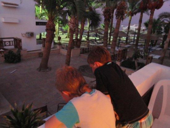 Al Mashrabiya : Вид с балкона нашего номера 397