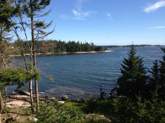 Goose Cove Lodge: great view from waterfront lodge