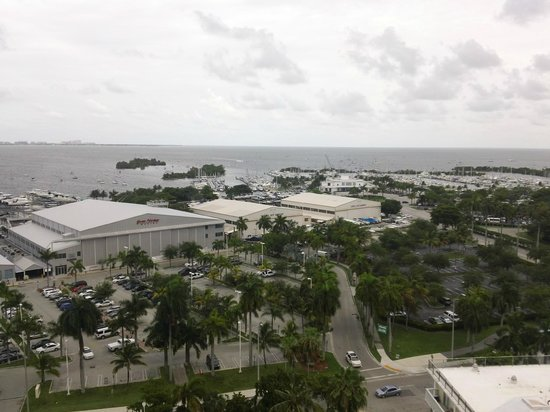 Courtyard Miami Coconut Grove: Views from my room