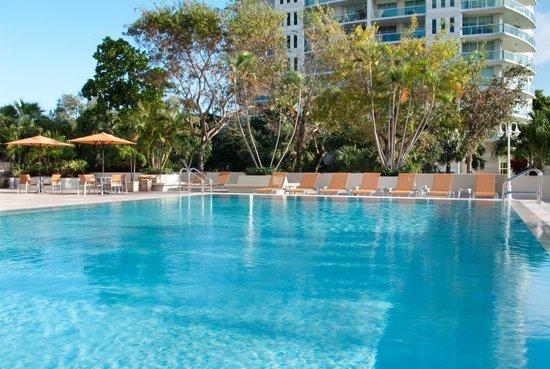 Courtyard Miami Coconut Grove: The pool