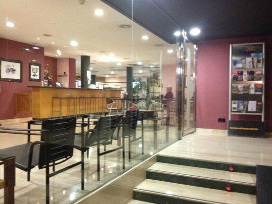 Hotel Terrassa Park: Entrada Hotel