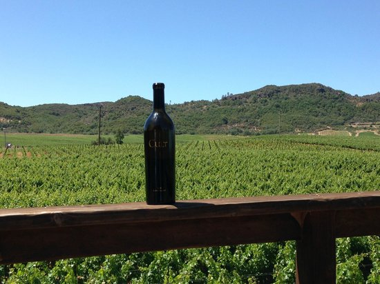 Stag's Leap Wine Cellars: Beau Vigne Winery 