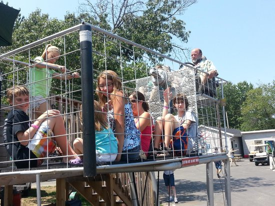Smokey Hollow Campground: Giant Shopping Carts Rides--don't miss these!