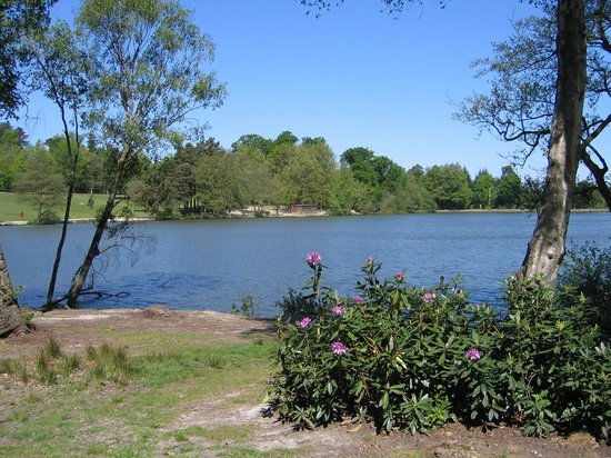 Tilgate Park : Tilgate Lake