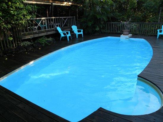 La piscine photo de au jardin des colibris deshaies for Au jardin des colibris