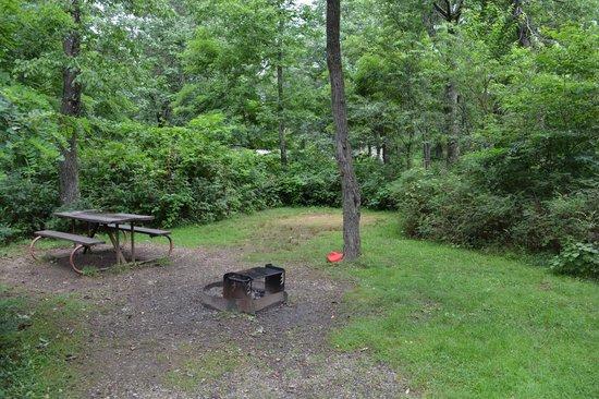 Loft Mountain Campground: A22