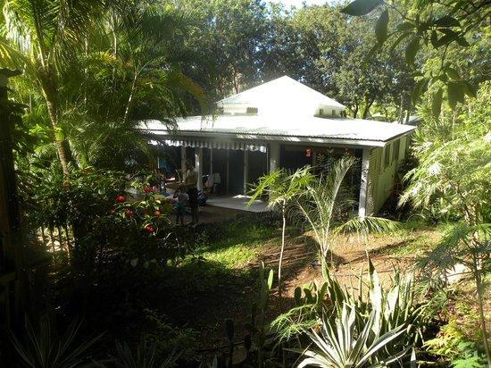 La piscine vue du coin d tente bild von au jardin des for Au jardin des colibris