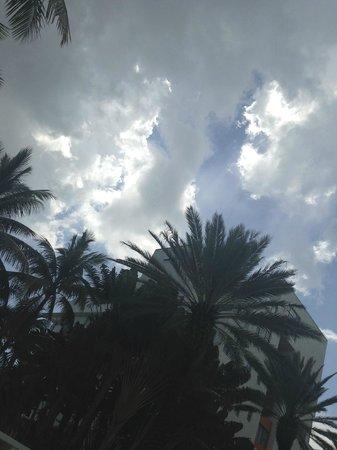 The Raleigh Miami Beach: The sky