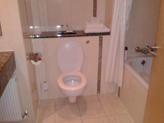 Ardmore Hotel: bagno pulito