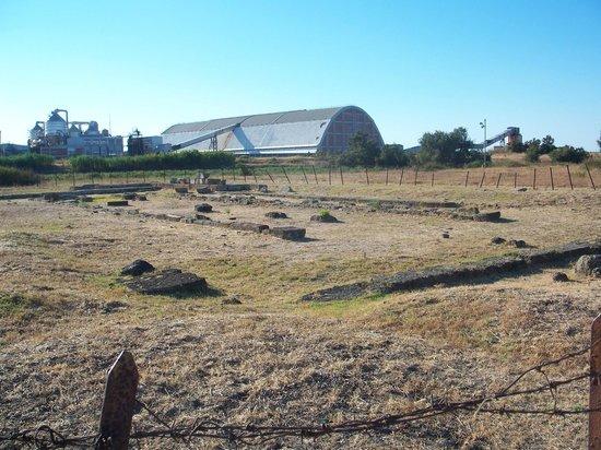 Tempio di Apollo Aleo: Tempio Apollo Aleo