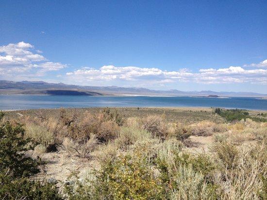 Mono Basin Scenic Area Visitor Center: A Mono Lake Beauty