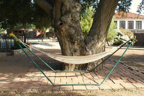 Rancho Los Chabacanos: Hamaca en el centro del rancho