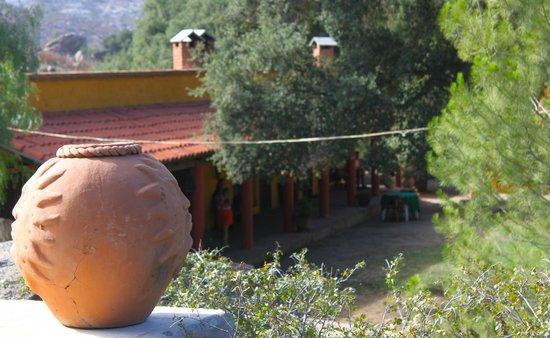 Rancho Los Chabacanos: Vista desde el Spa