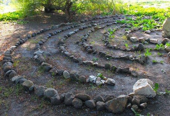 Rancho Los Chabacanos: Area de meditacion