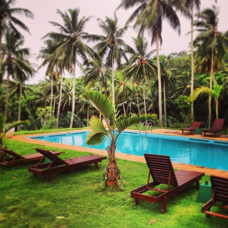 Jim's Farm Villas: The swimming pool at the Hilltop Villa