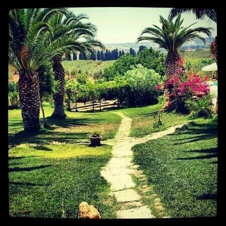 Baglio Vecchio Agriturismo: il vialetto