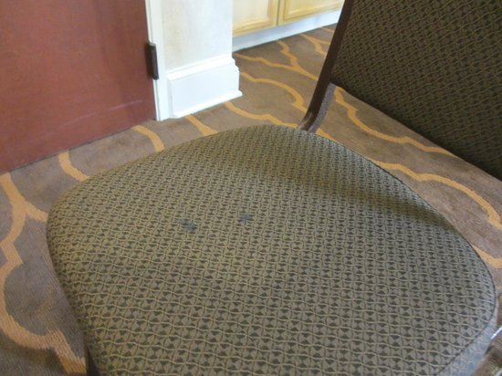 Comfort Suites Myrtle Beach : The stained desk chair in my room