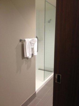 Hampton Inn & Suites Denver Downtown-Convention Center: Half wall shower