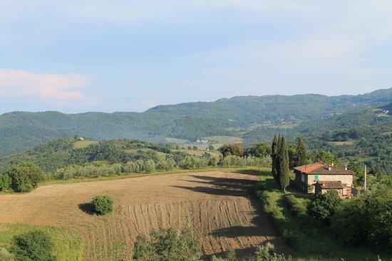 Agriturismo La Sala: view