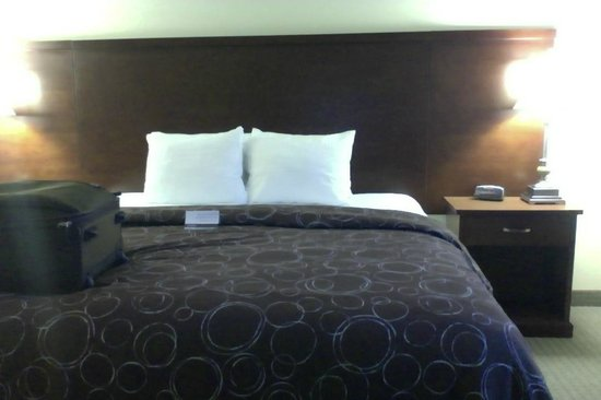 Staybridge Suites East Stroudsburg - Poconos: The king bedroom