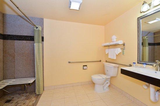 Americas Best Value Inn & Suites - San Francisco Airport: Accessible Bathroom