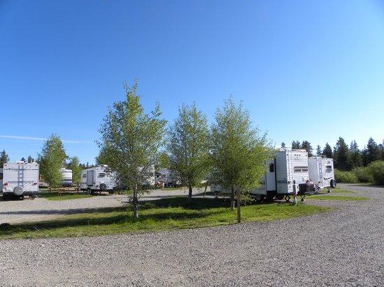 Buffalo Run Campground: RV Park