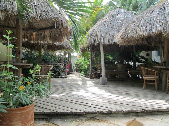 Paradera Park Aruba: Shady Palapas
