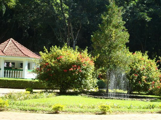 Parque das Aguas: Fontes Minerais