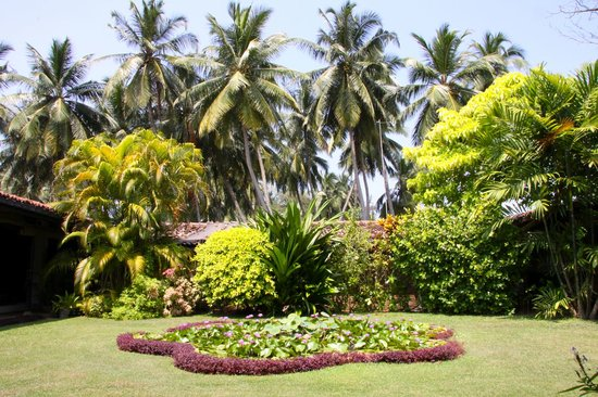 Sri Budhasa Ayurveda Resort : Garten