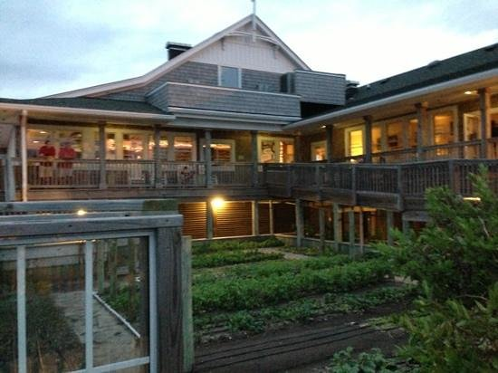 The Herb Garden And Back Deck   Picture Of Basnightu0027s Lone Cedar Cafe, Nags  Head   TripAdvisor