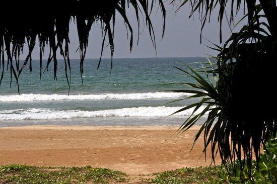 Sri Budhasa Ayurveda Resort : Hotel Strand